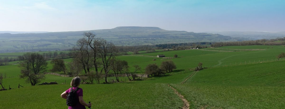 Looking across to Penhill from The Shawl near Leyburn in Wensleydale