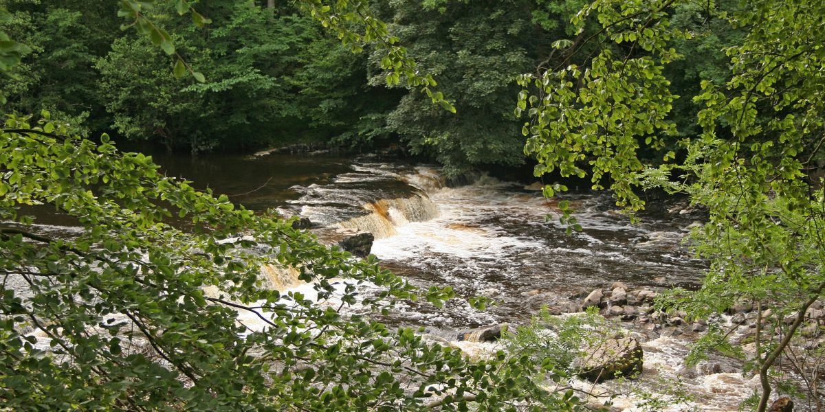 Redmire Force on the River Ure