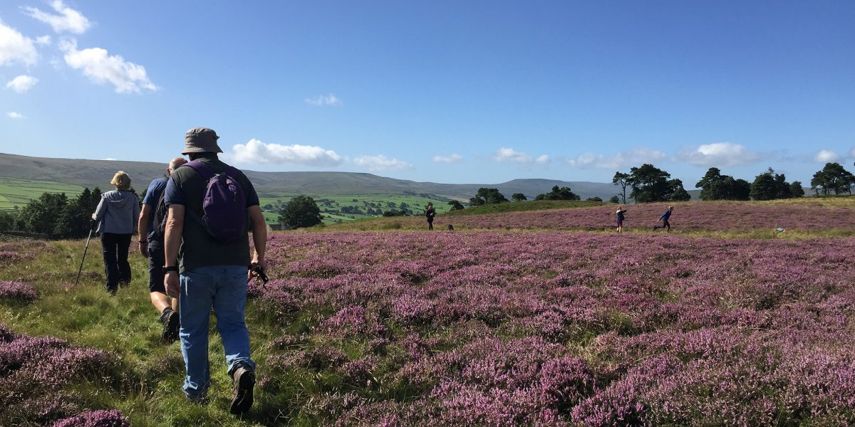 Walking in the glorious Yorkshire Dales